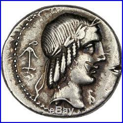 Monnaies antiques, Calpurnia, Denier #30892