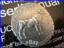Romain denier argent CAESAR AUGUSTUS au taureau qualité SUP